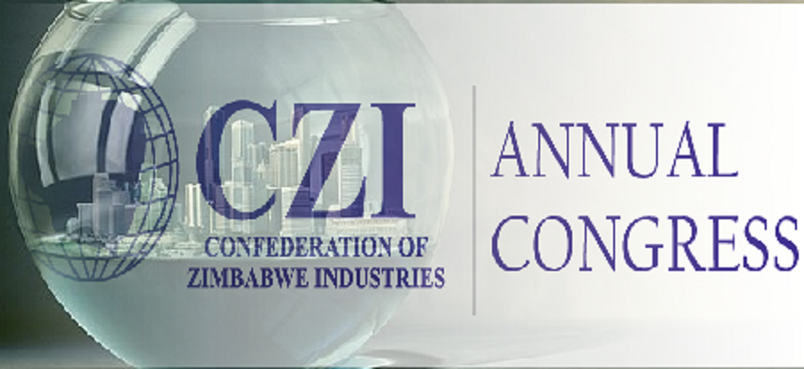 CZI in rallying call for investment