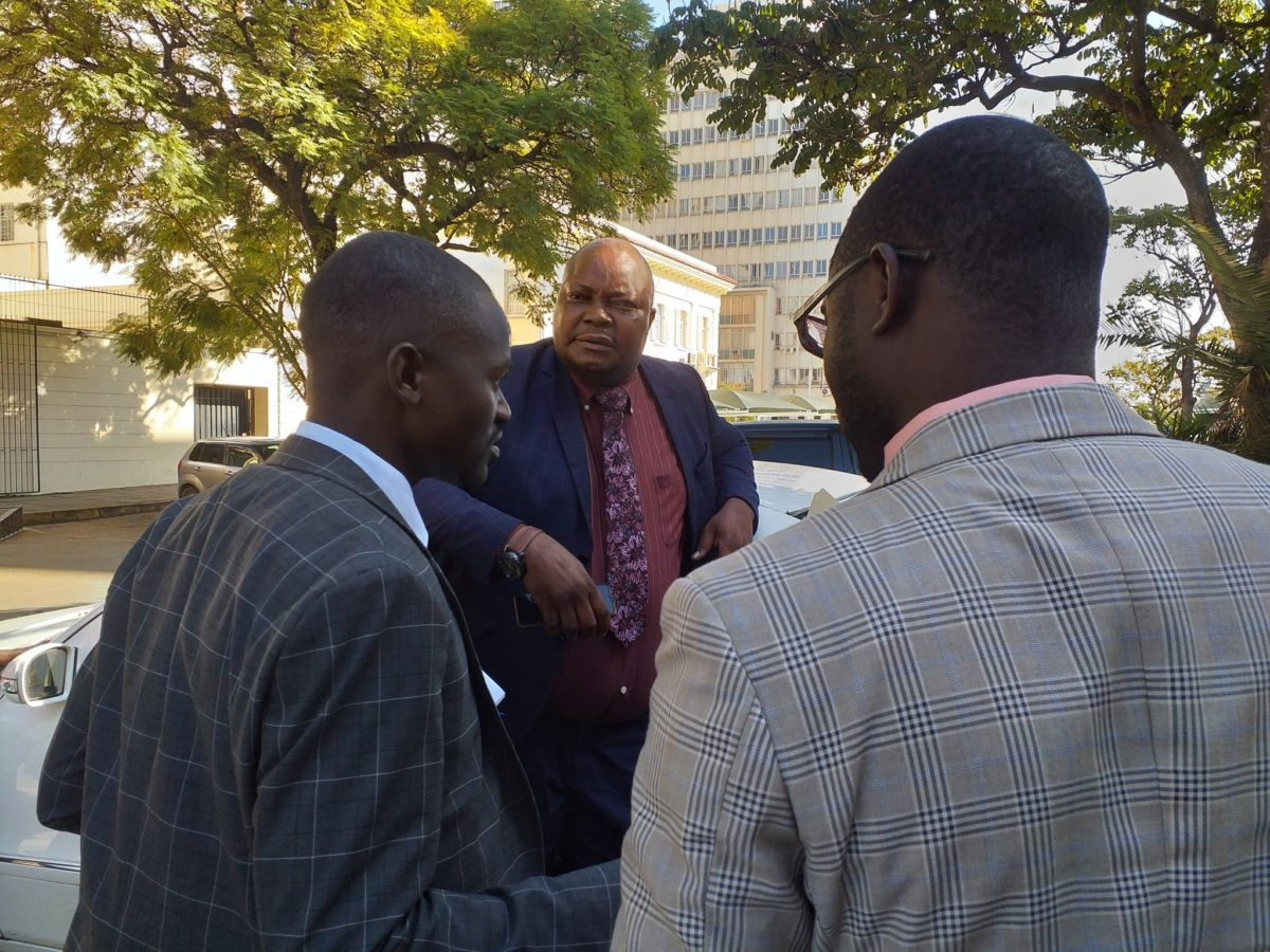 Chamisa's MDC divided over Sikhala