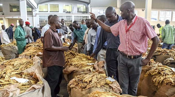 Tobacco fails to deliver Zim forex relief